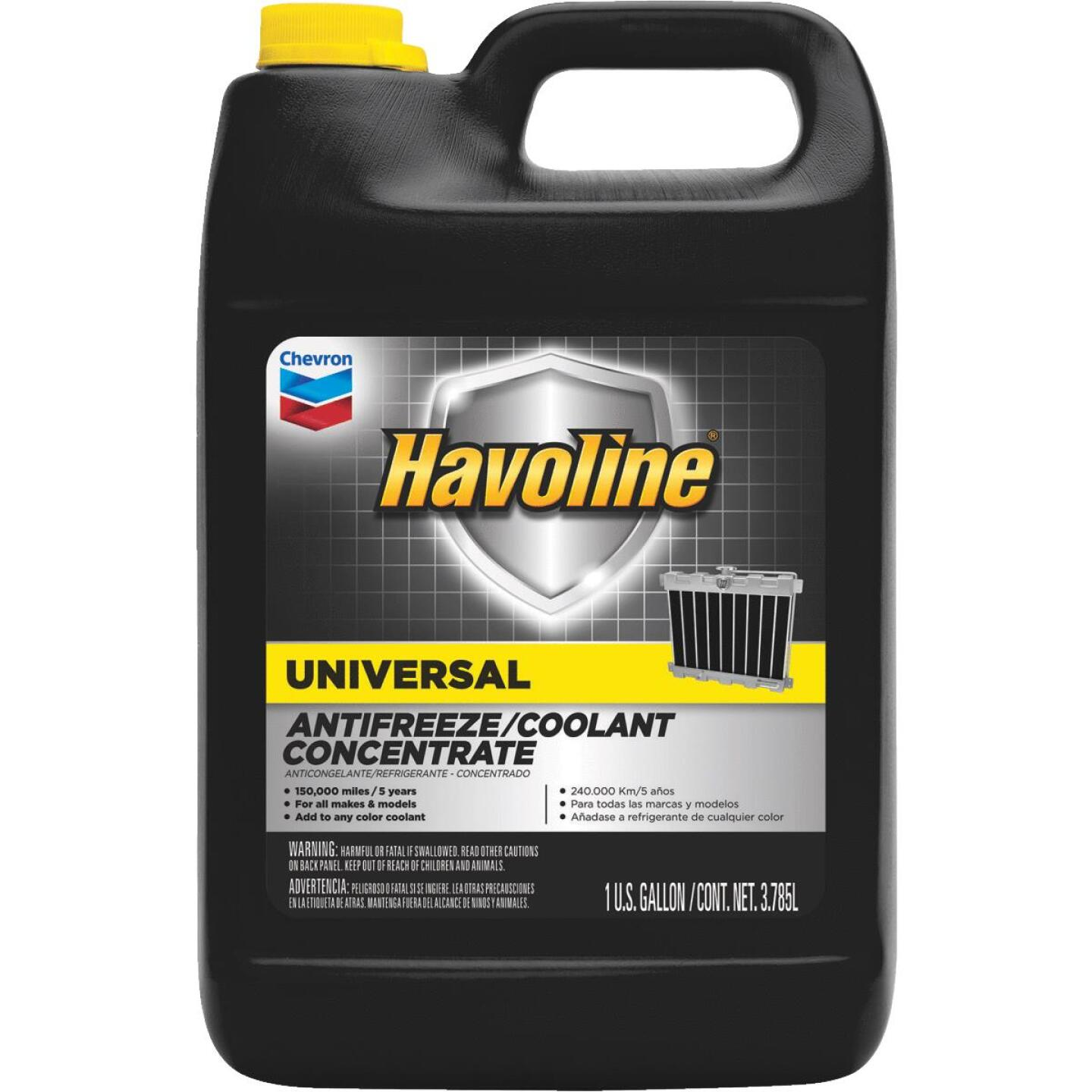 Havoline Universal Gallon Concentrate -34 F to 265 F Automotive Antifreeze Image 1