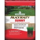 Jonathan Green Black Beauty 3 Lb. 1275 Sq. Ft. Coverage Full Sun Grass Seed Image 1