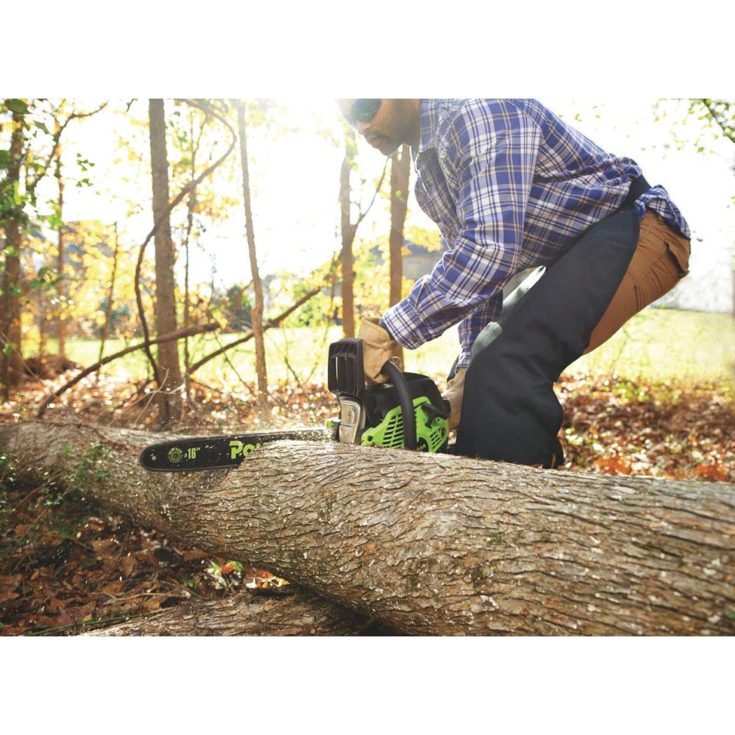 Poulan PL3816 16 In. 38 CC Gas Chainsaw Image 2